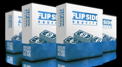 flipside-profits