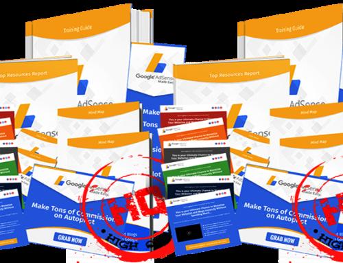 Google AdSense Success PLR at $10