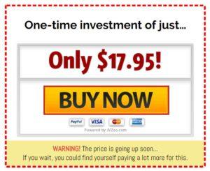 instant-buyer-traffic-price