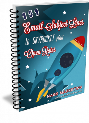 151-Email-Subject-Lines-to-Skyrocket-Your Open-Rates-eCover